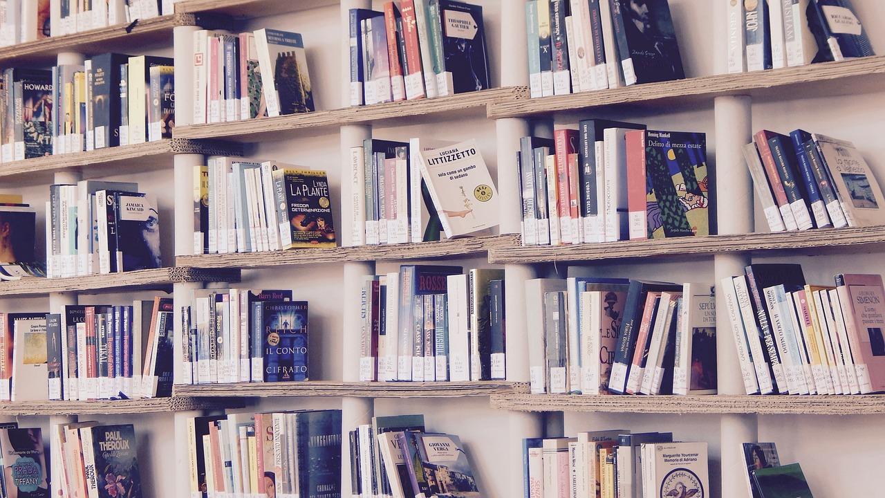 Książki, czy warto czytać.